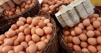 Vier große Körbe voller Eier und einiger Eierkartons
